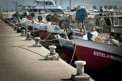 pescadores-del-puerto-de-punta-del-este-2