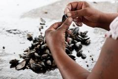 pescadores-del-puerto-de-punta-del-este-7